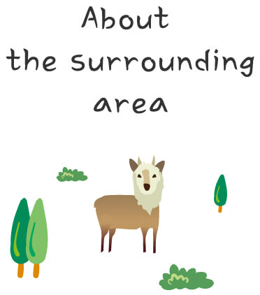 About the Surrounding area